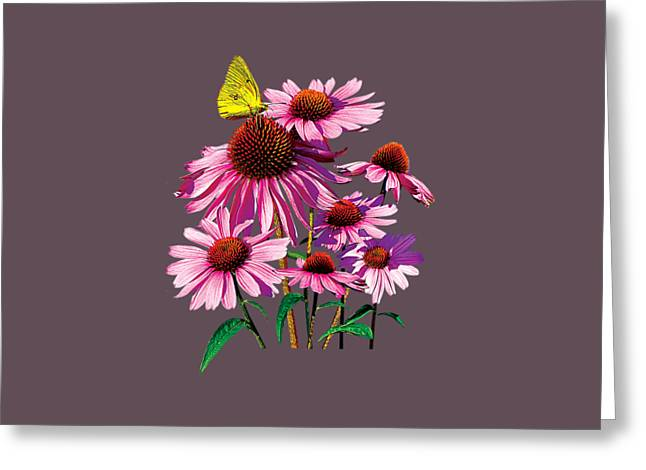 Daisy Greeting Cards - Yellow Sulphur Butterfly on Coneflower Greeting Card by Susan Savad