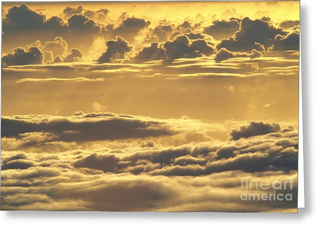 Yellow Sunset Greeting Card by Carl Shaneff - Printscapes