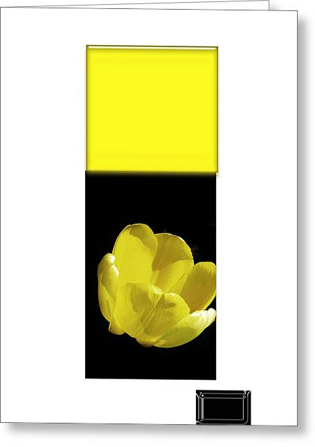 Installation Art Greeting Cards - Yellow Tulip 2 Of 3 Greeting Card by Tina M Wenger