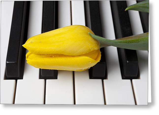 Keyboard Photographs Greeting Cards - Yellow tulip on piano keys Greeting Card by Garry Gay