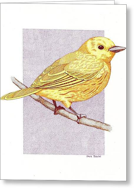 Stippling Drawings Greeting Cards - Yellow Warbler Greeting Card by Jack Puglisi