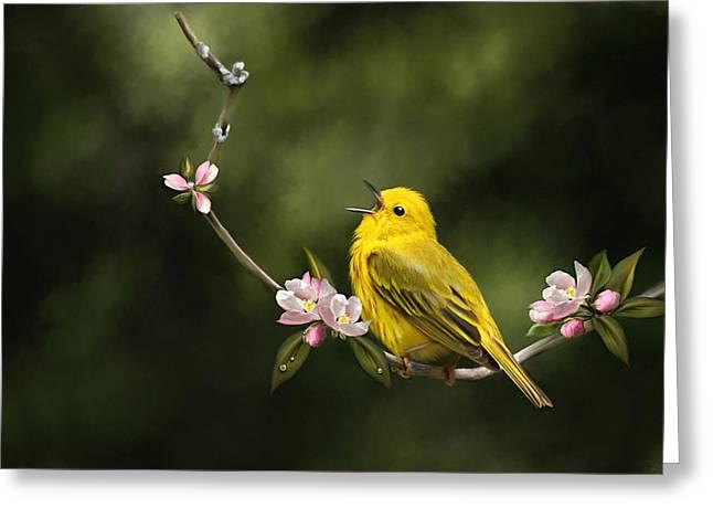 Yellow Warbler Greeting Cards - Yellow Warbler  Greeting Card by Renee Dawson