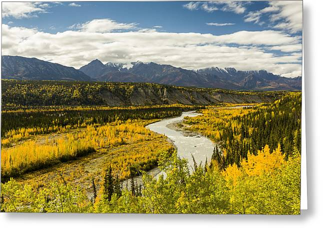 A River In Autumn Greeting Cards - Yellows In The Valley And Reds Greeting Card by Ray Bulson