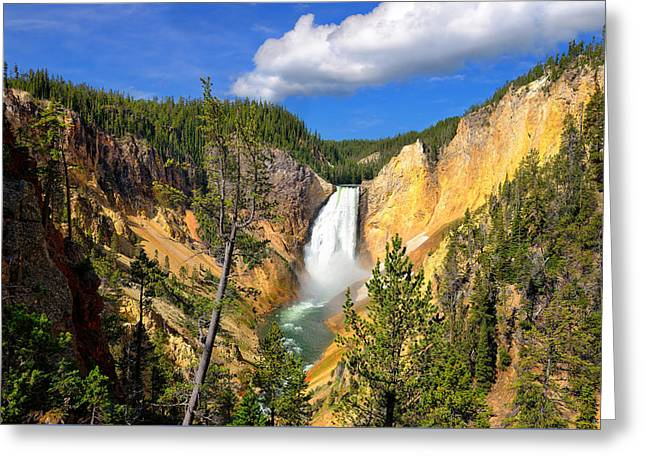 Landscape Photography Greeting Cards - Yellowstone Lower Falls Greeting Card by Greg Norrell