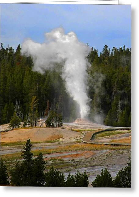 Yellowstone Park Wy - Geyser Letting Off Steam Greeting Card by Christine Till