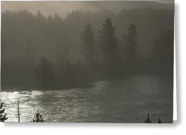 Yellowstone River Fog Greeting Card by Sandra Bronstein