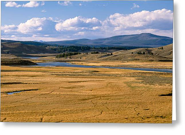 Yellowstone River In Hayden Valley Greeting Card by Panoramic Images