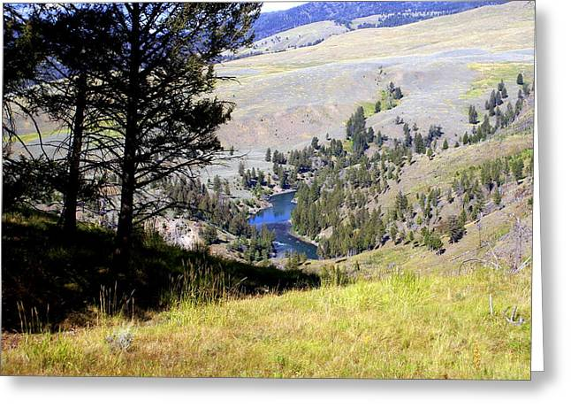Marty Koch Greeting Cards - Yellowstone River Vista Greeting Card by Marty Koch
