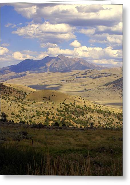 Yellowstone View Greeting Card by Marty Koch