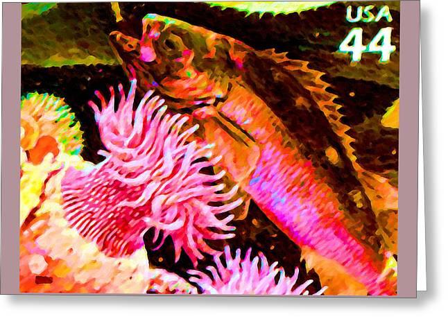 Arctic Rose Greeting Cards - Yellowtail rockfish Greeting Card by Lanjee Chee