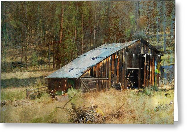 Barn Digital Greeting Cards - Yesteryear Shed 2 Greeting Card by Dale Stillman