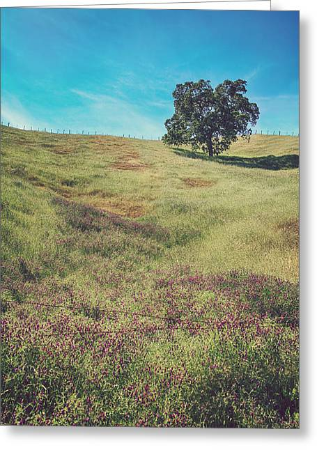 California Hills Greeting Cards - Yet I Feel His Arms Around Me Greeting Card by Laurie Search