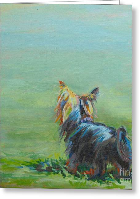 Turquoises Greeting Cards - Yorkie in the Grass Greeting Card by Kimberly Santini