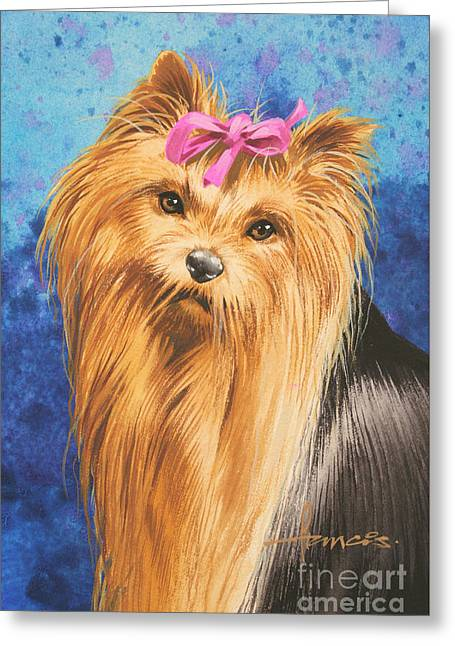 Dog Portraits Greeting Cards - Yorkie Greeting Card by John Francis