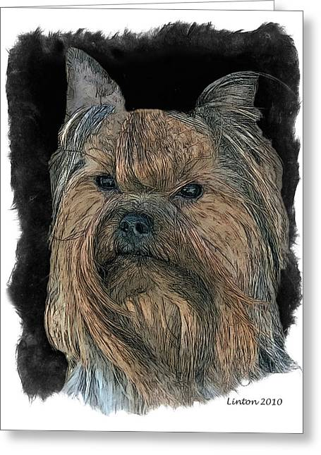 Bred Greeting Cards - Yorkshire Terrier Greeting Card by Larry Linton