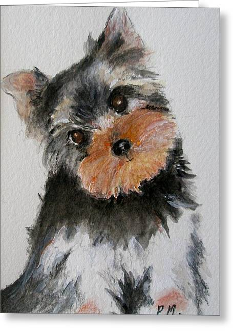 Yorkshire Terrier Watercolor Greeting Cards - Yorkshire Terrier Greeting Card by Pamela Morris