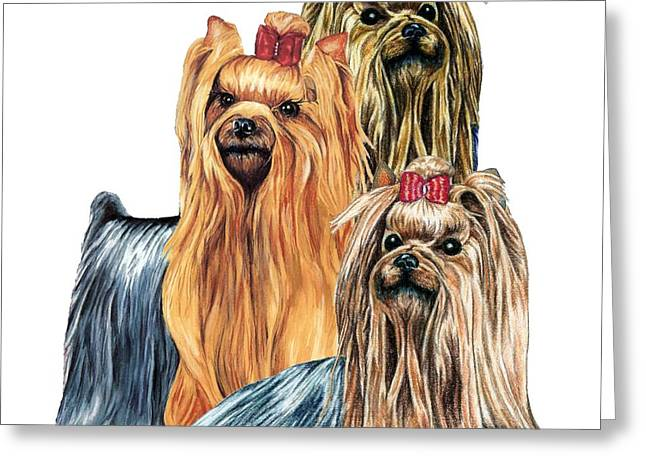 Dog Drawings Greeting Cards - Yorkshire Terriers Greeting Card by Kathleen Sepulveda