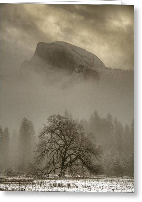 Yosemite In The Winter Greeting Card by Connie Cooper-Edwards