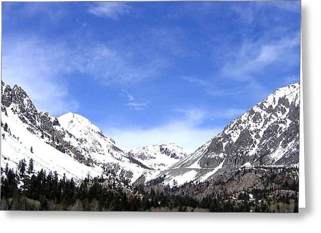 Magnificent Landscape Greeting Cards - Yosemite Park Greeting Card by Will Borden