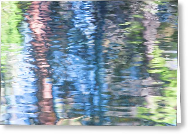 Yosemite Reflections Greeting Card by Larry Marshall