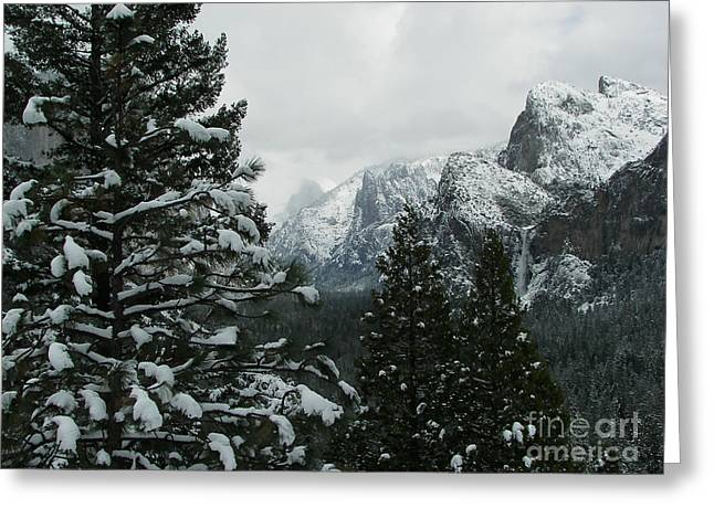 Yosemite Greeting Cards - Yosemite Valley In Winter Greeting Card by Sue Gardiner