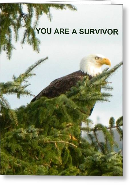 Anti Greeting Cards - You Are A Survivor Greeting Card by Gallery Of Hope