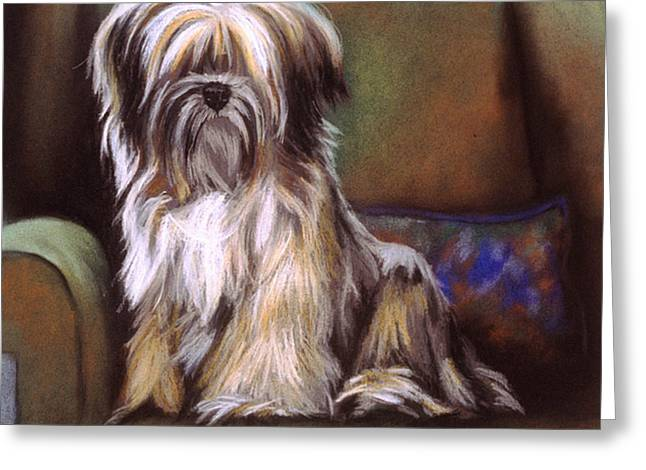 Terriers Pastels Greeting Cards - You Are In My Spot Again Greeting Card by Barbara Keith