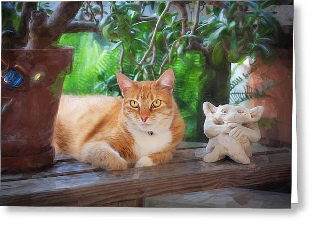 Easy Going Greeting Cards - You Both Lookin at Me Ginger Cat Greeting Card by Rich Franco