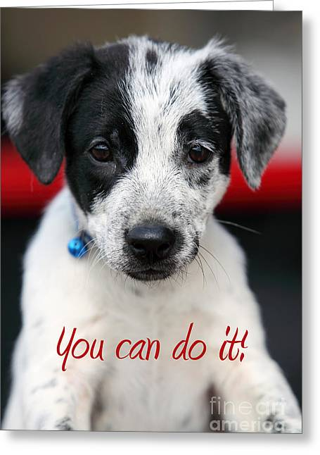 Art For Inspiration Greeting Cards - You can do it Greeting Card by Amanda Barcon