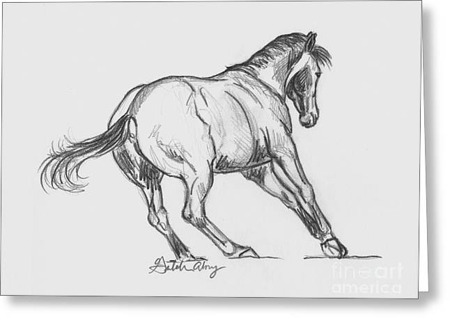 Dressage Drawings Greeting Cards - You cant catch me... Greeting Card by Gretchen Almy
