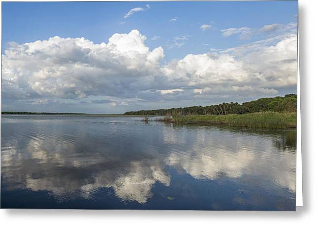 Photographers Forest Park Greeting Cards - You Might KNow Greeting Card by Jon Glaser