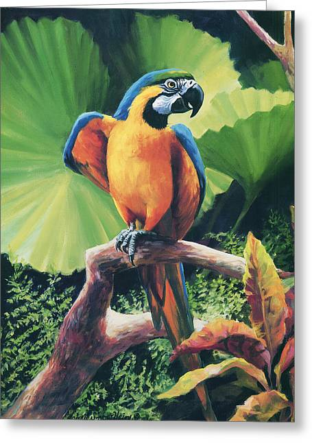 Parrot Greeting Cards - You Got To Be Kidding Greeting Card by Laurie Hein