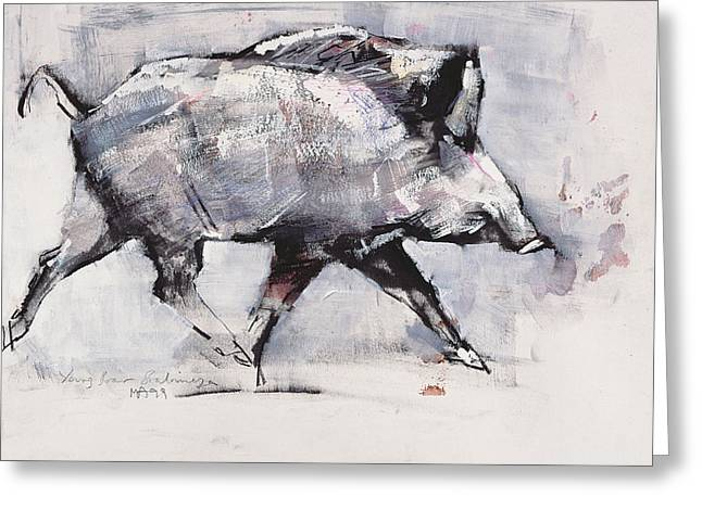 Baby Animal Drawings Greeting Cards - Young boar Greeting Card by Mark Adlington