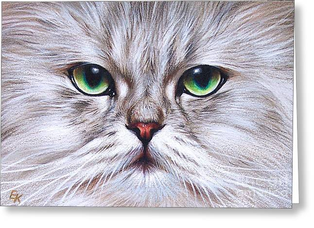 Cat Drawings Greeting Cards - Young Chinchilla  Greeting Card by Elena Kolotusha