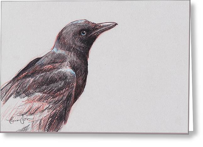 Crow Mixed Media Greeting Cards - Young Crow 1 Greeting Card by Tracie Thompson