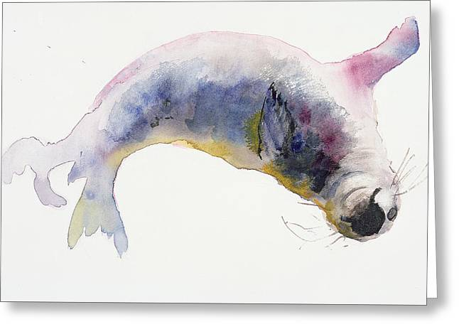 Young Grey Seal Greeting Card by Mark Adlington