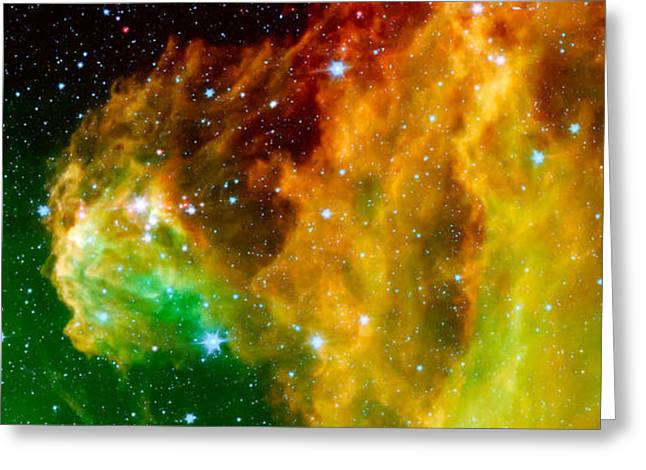 Nasa Greeting Cards - Young Stars Emerge from Orions Head Greeting Card by Space Art Pictures
