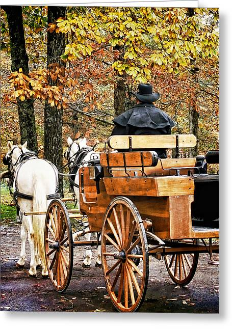 Your Carriage Awaits Greeting Card by TnBackroadsPhotos