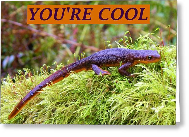 Anti Greeting Cards - Your Cool - Large Greeting Card by Gallery Of Hope