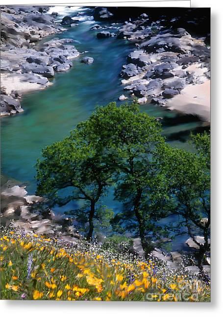 Transformative Art Greeting Cards - Yuba River in Spring Greeting Card by Lisa Redfern