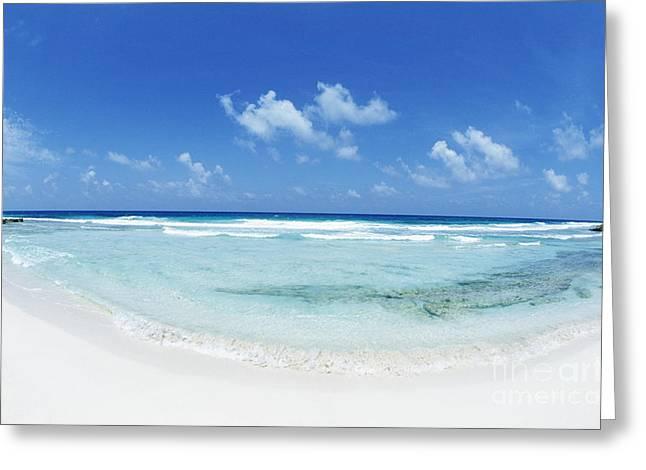 Mujeres Greeting Cards - Yucatan Peninsula Isla Mujeres Greeting Card by Bill Bachmann - Printscapes