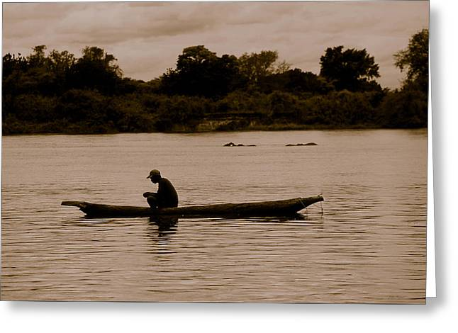 Canoe Photographs Greeting Cards - ZAMBIA At one with the hippos Greeting Card by Julian Wicksteed