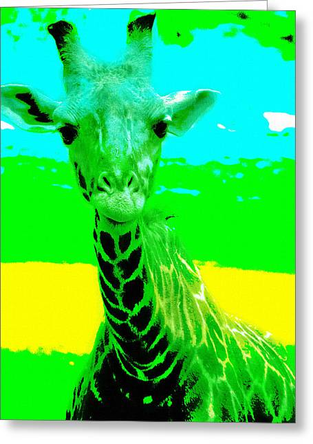 Photo Art Gallery Greeting Cards - Zany Giraffe Greeting Card by Lisa S Baker