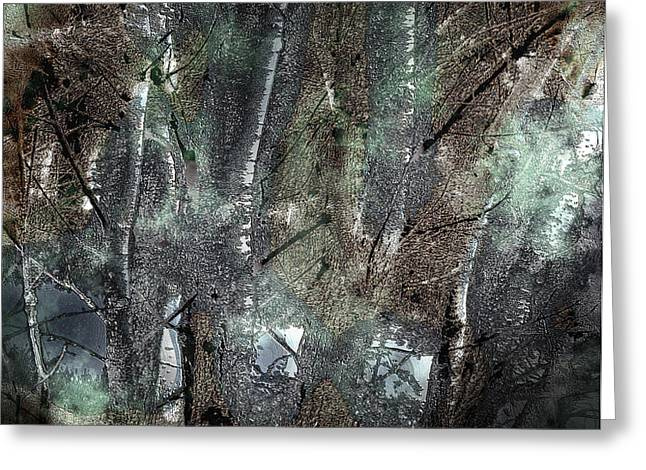 Zauberwald Vollmondnacht Magic Forest Night of the Full Moon Greeting Card by Mimulux patricia no