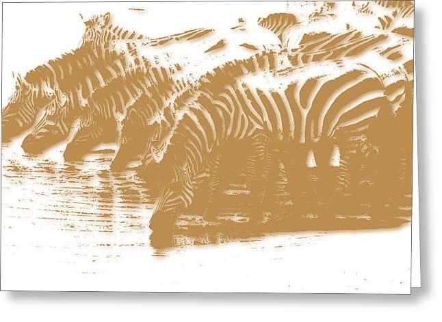 Zebra 5 Greeting Card by Joe Hamilton