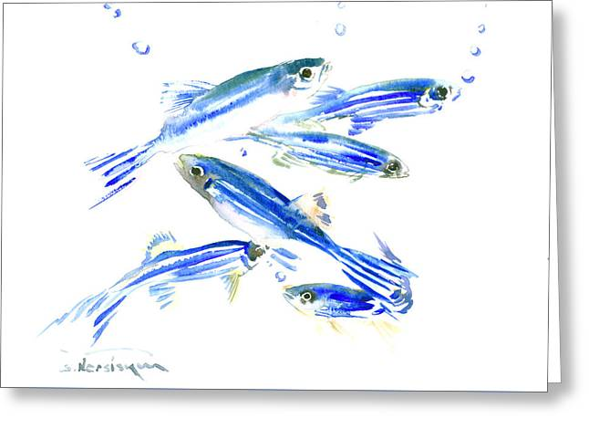 Zebra Fish, Danio Greeting Card by Suren Nersisyan