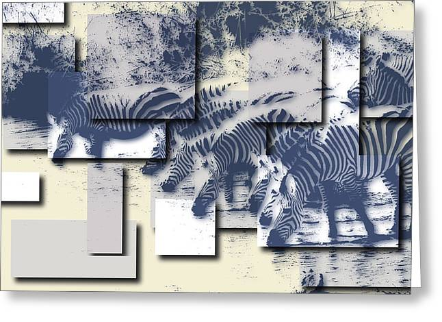Zimbabwe Photographs Greeting Cards - Zebras Greeting Card by Joe Hamilton