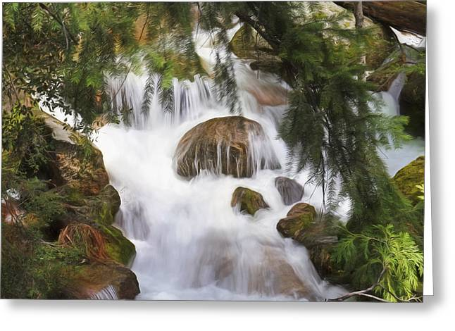Zen At Yosemite Greeting Card by Donna Kennedy