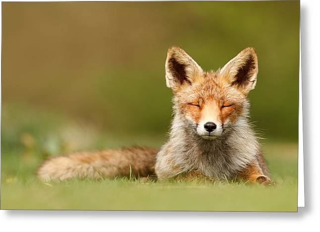 Zen Fox Series - Born To Be Happy Greeting Card by Roeselien Raimond