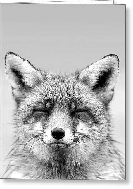 Zen Fox Series - Smiling Fox Portrait Bw Greeting Card by Roeselien Raimond